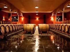 究極の超高級ワイン「シャトール・パン」の歴史に迫る