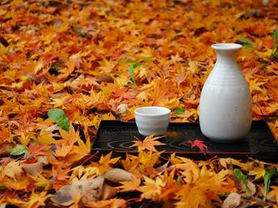 秋の旬酒ひやおろし