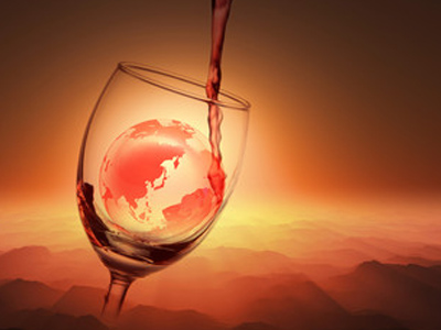 ビオワインという言葉は無い!?オーガニックワインの正体とは?